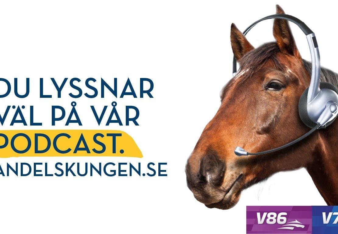 Andelskungens podcast med Krukan, Brolin och Norinder